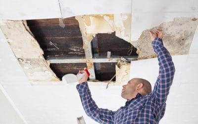 How To Spot A Leak In Your Roof
